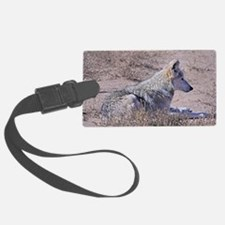 mexican-wolf Luggage Tag