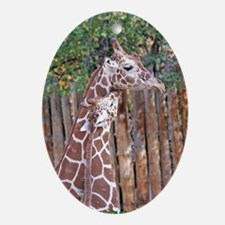 giraffe-cuddle Oval Ornament