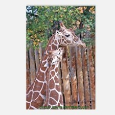 giraffe-cuddle Postcards (Package of 8)