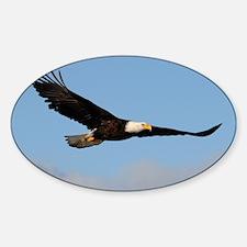 x14  1w Sticker (Oval)