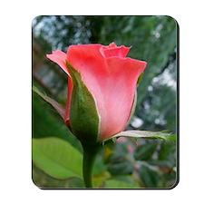 rr-pinkrosebud-card031 Mousepad