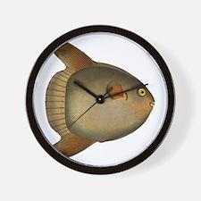 Mola Mola Giant Sunfish Wall Clock