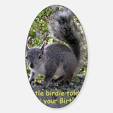 Squirrel Birthday Card - Birdie Decal