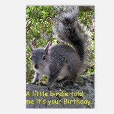Squirrel Birthday Card -  Postcards (Package of 8)