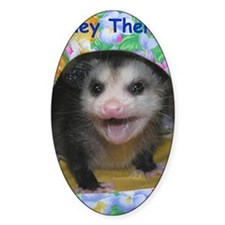 Possum Birthday Card - Hey There Decal