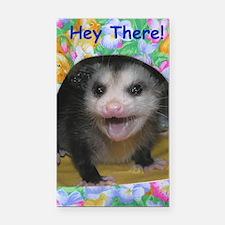 Possum Birthday Card - Hey Th Rectangle Car Magnet