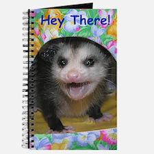 Possum Birthday Card - Hey There Journal