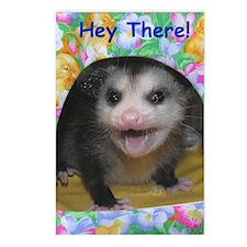 Possum Birthday Card - He Postcards (Package of 8)