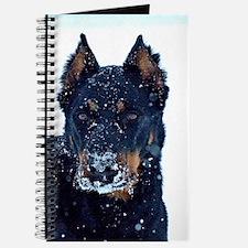 Snow Queen Journal