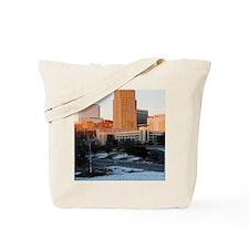 DSC_0004_3 Tote Bag