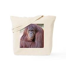 orangutan-tranquility-1 Tote Bag