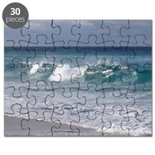 Waves on Friendly Beach Puzzle