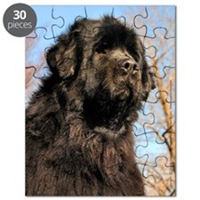 notecards_120809a418 Puzzle