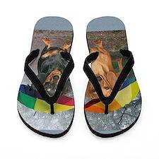 rain umbrella dogs16x16 copy Flip Flops