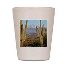 Desert View 2010 Shot Glass
