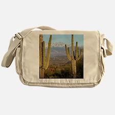 Desert View 2010 Messenger Bag