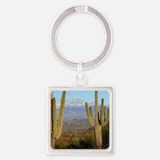 Desert View 2010 Square Keychain