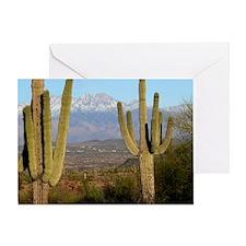 Desert View 2010 Greeting Card