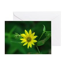 Woodland Sunflower Greeting Card