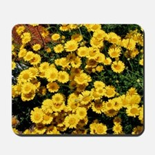 Little Sunflower Throw Pillow Mousepad