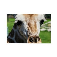 Giraff Rectangle Magnet
