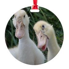 DSC_0046 Ornament