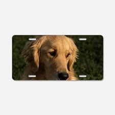 (3) golden retriever head s Aluminum License Plate
