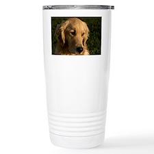 (2) golden retriever head shot Travel Mug