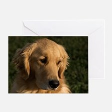 (2) golden retriever head shot Greeting Card
