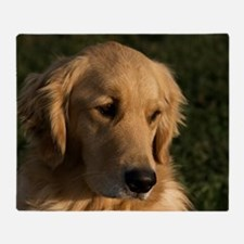 (2) golden retriever head shot Throw Blanket