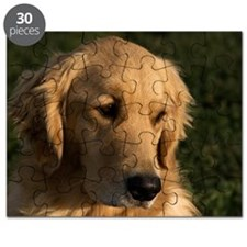 (2) golden retriever head shot Puzzle