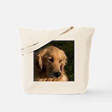 (15) golden retriever head shot Tote Bag