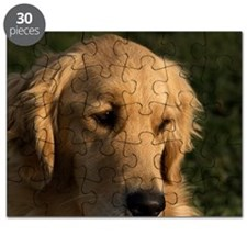 (15) golden retriever head shot Puzzle