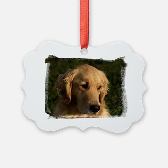 (16) golden retriever head shot Ornament