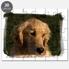 (16) golden retriever head shot Puzzle
