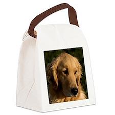 (15s) golden retriever head shot Canvas Lunch Bag