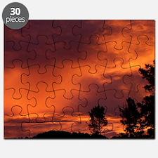 100_4521-Aug Puzzle