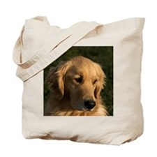 (14) golden retriever head shot Tote Bag