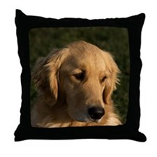 (14) golden retriever head shot Throw Pillow