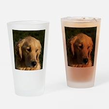 (14) golden retriever head shot Drinking Glass
