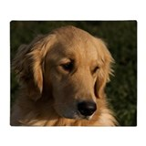 Golden retriever Fleece Blankets