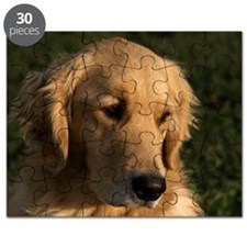 (12) golden retriever head shot Puzzle