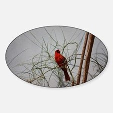 Cardinal Sticker (Oval)