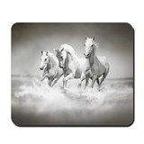 Lipizzaner stallions Mouse Pads
