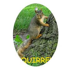 Squirrel Oval Ornament
