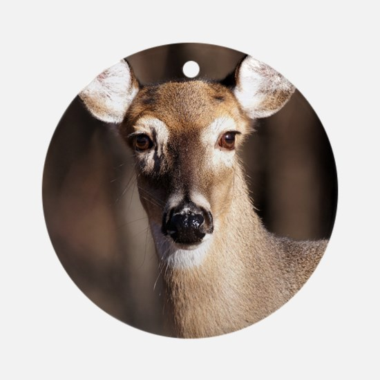 Whitetail Deer Doe Round Ornament