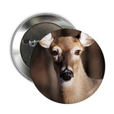 "Whitetail Deer Doe 2.25"" Button"