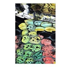 snake Postcards (Package of 8)