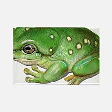 splendidtreefrog Rectangle Magnet