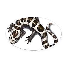 salamander Oval Car Magnet